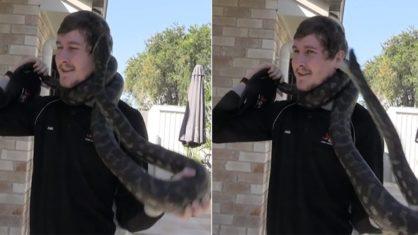 cobra 3 418x235 1 - Homem é surpreendido com picada de cobra enquanto ela se enrosca em seu pescoço - VEJA VÍDEO