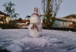 Serra de SC amanhece com temperaturas negativas e geada