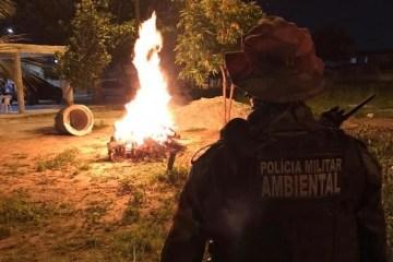 csm WhatsApp Image 2021 06 24 at 06.09.42  2  e1f8624e33 - Polícia Militar recebe mais de 700 denúncias durante véspera de São João na Paraíba
