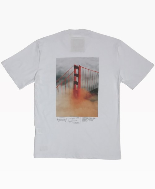 Cat Golden Gate Bridge Tee White Back