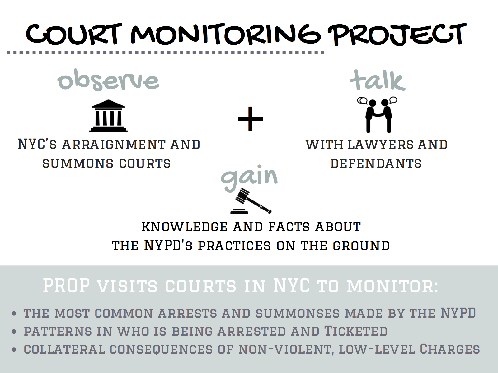 The Court Monitoring Project