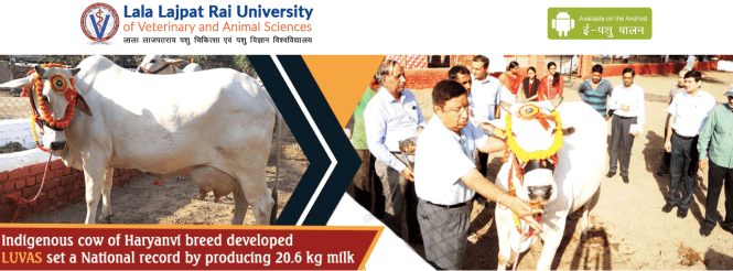 Haryana Veterinary Recruitment 2020