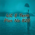LIC E Term Term Policy 825 Plan Review and Benefits