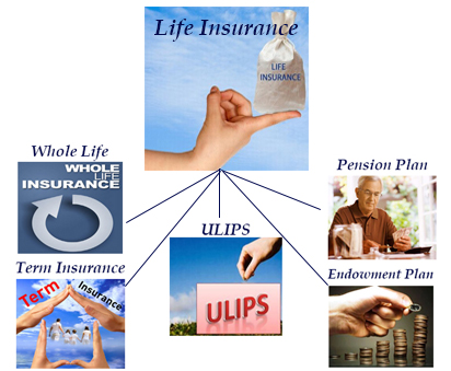 life insurance structure