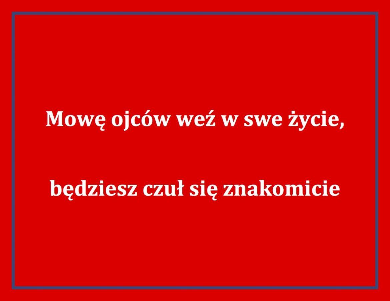 dwujezycznosc-hasla-promocyjne-7