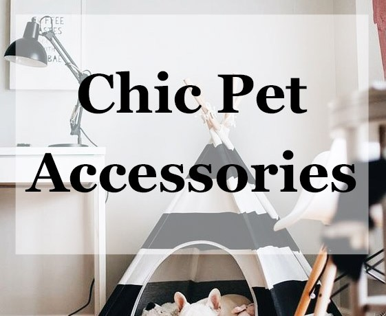 Tidy Tuesday || Chic Pet Accessories