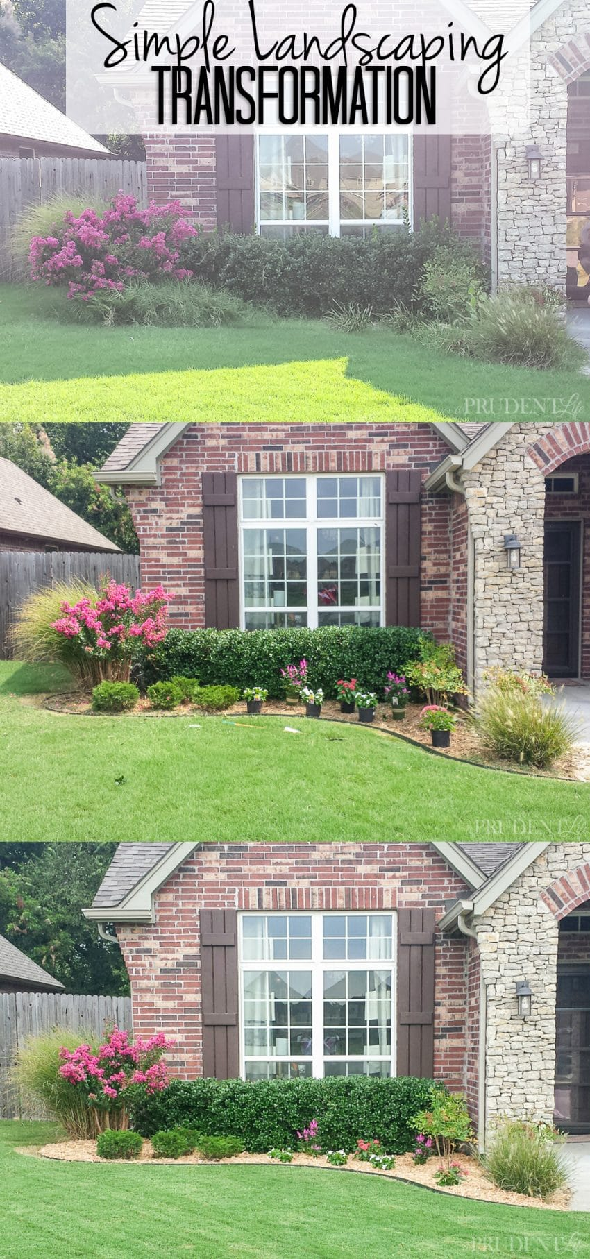 Lessons from Landscaping {The Blog Post That Wasn't ...