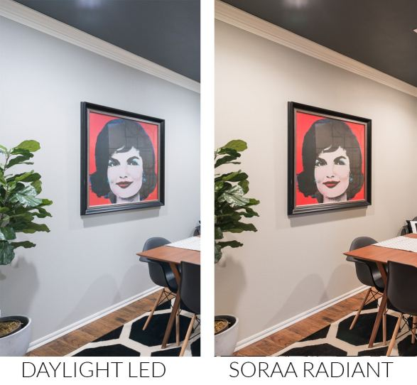 Comparison of Daylight LED bulb to Soraa Radiant lightbulbs