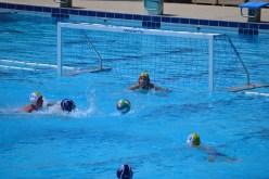 Cus Unime - Polisportiva Messina - Under 15 - 60