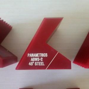 ABWS-2 Panametrics 45