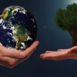 Autonomia e convergenza. I fondamenti di Politica Insieme per la rigenerazione – di Francesco Punzo