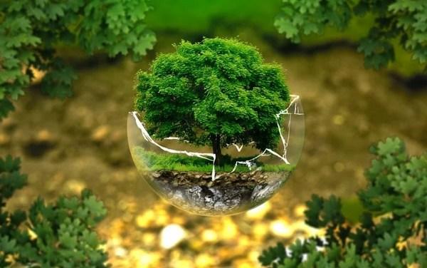 Il futuro che vogliamo nella complessità e sostenibilità generativa- di Marco Bevilacqua e Piergiorgio Farina