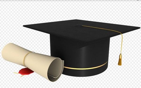 La politica universitaria della nuova generazione: un'occasione- Maddalena Verga