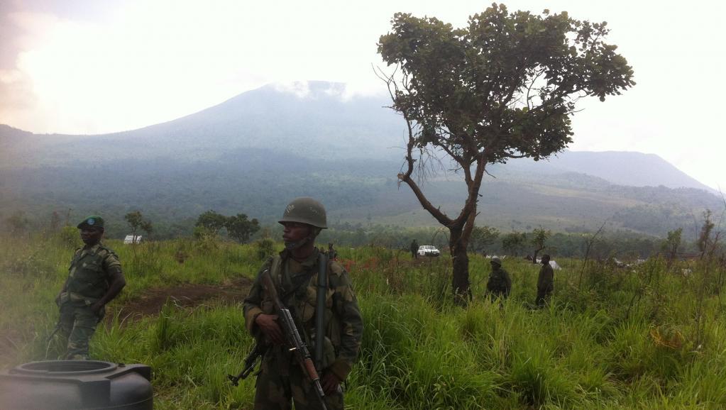 Kidnapping de deux britanniques dans les Virunga: les FDLR démentent leur prétendue implication