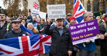 Image result for brexit protest