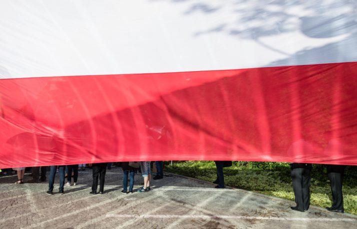 Celebridad de televisión polaca anuncia su candidatura a la presidencia - POLITICO 9