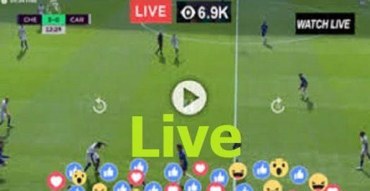 EVE v NEW   Live English Football   Everton vs Newcastle ...