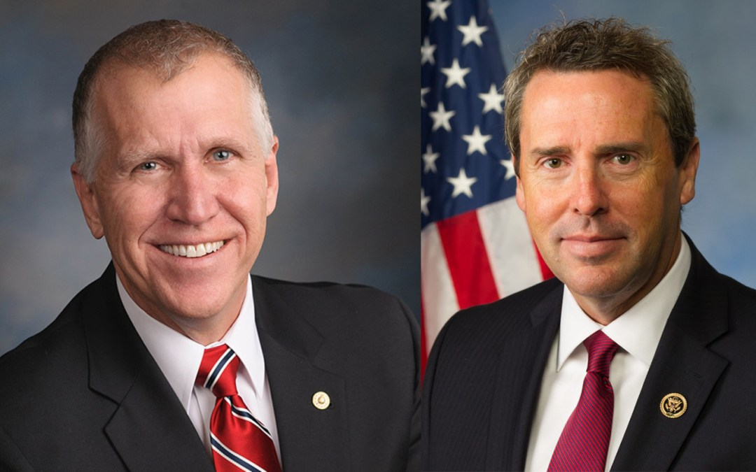 A Tillis-Walker primary?