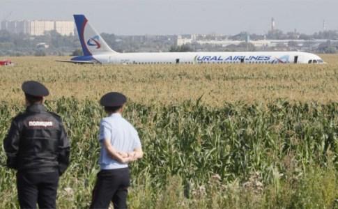 Резултат слика за пилоти који су спустили авион у кукурузно поље
