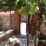 Νοικιάζεται στη Παναγιούδα Μυτιλήνης Γκαρσονιέρα