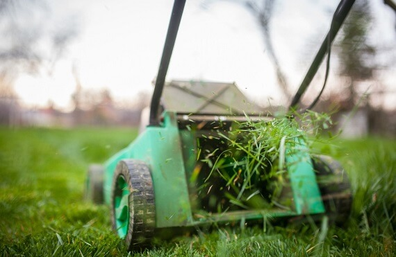 Grass Cutting Service-in-Lahore