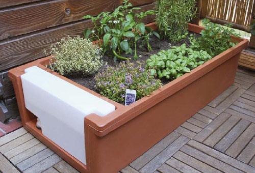 vorrei un piccolo prato su balcone  Forum Giardinaggio