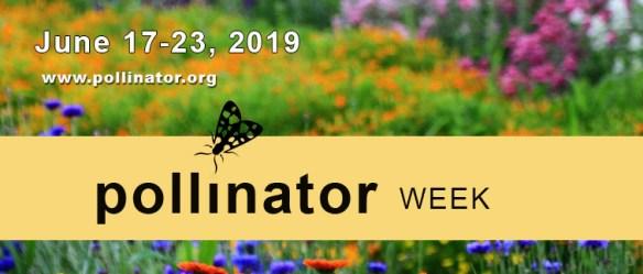 Houston Environmental News Update June 12, 2019 | Citizens