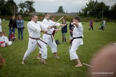 Karate Boston - pokaz