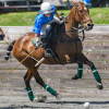 Aiken-Polo-Clubs-Robyn-Leitner-on-the-ball-in-the-GNIS-Semifinals.-©Larry-Johnson