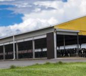 landbrukshaller