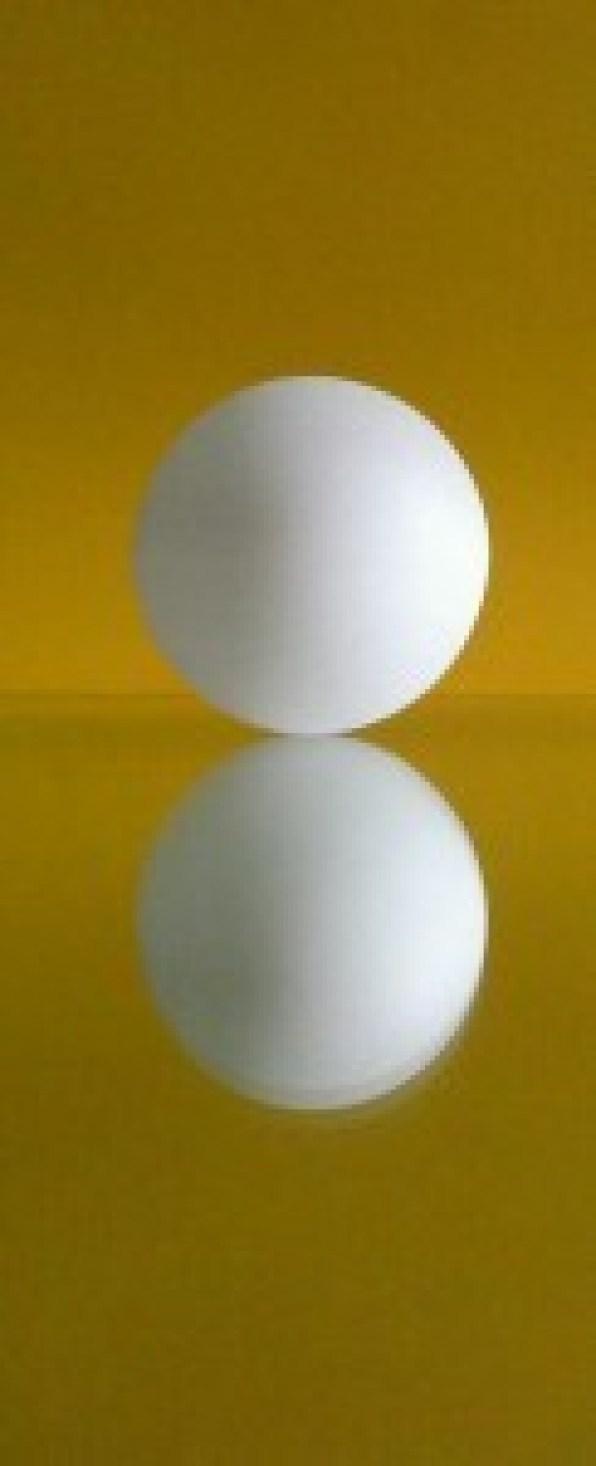 Muzeum 10 Kolorów-biały na żółtym
