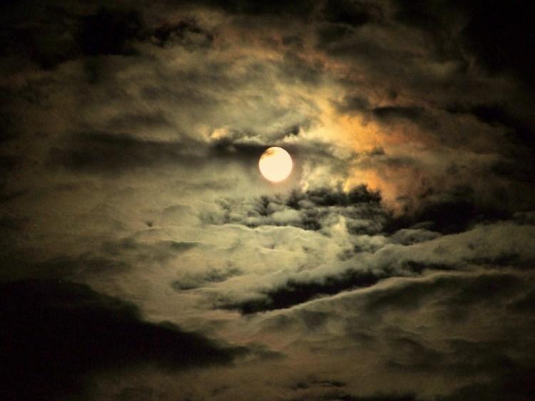Fruit-Moon