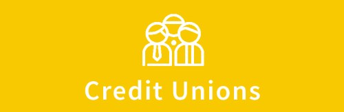 Essentials about credit union elections