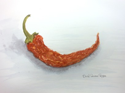 watercolor dried pepper