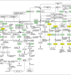 honda dio 1 wiring diagram [ 1398 x 926 Pixel ]