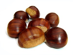 Eat up those chestnuts early! Image from freeimages.com.