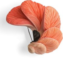 Kim Heeang layers petals of polymer that mimic fungi on PolymerClayDaily