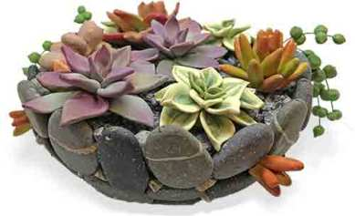 Kim Korringa creates a succulent world on PolymerClayDaily.com