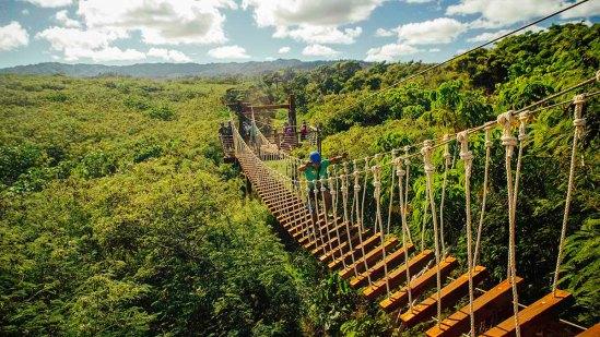 Climb Works rope bridge