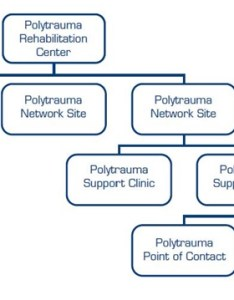 Org chart of the polytrauma system care also va tbi rh