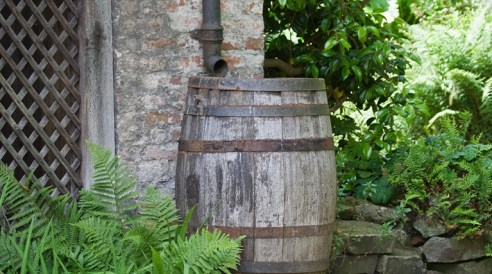 outdoor rain barrel