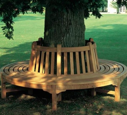 Bench Around the Tree