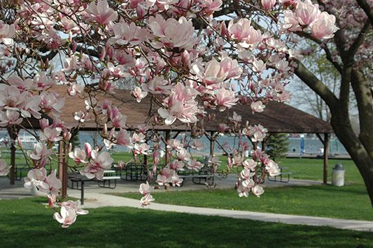 Lakeside-Park-Syracuse-Indiana