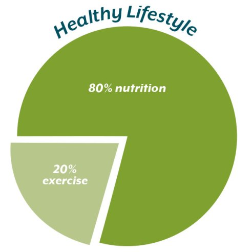 Healthy-Lifestyle-Pie-Chart-POLYWORLD-Blog