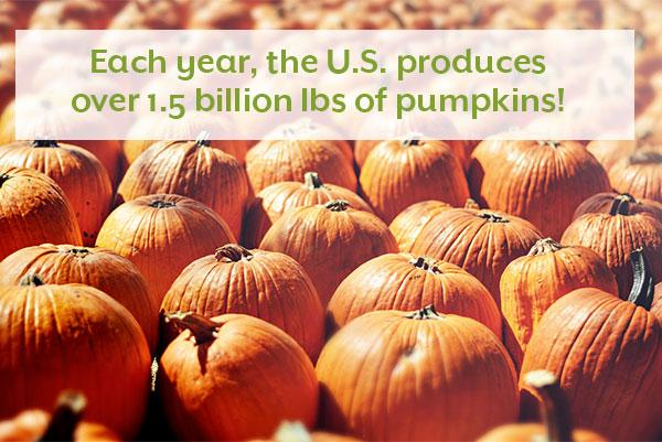 Pumpkin Fact