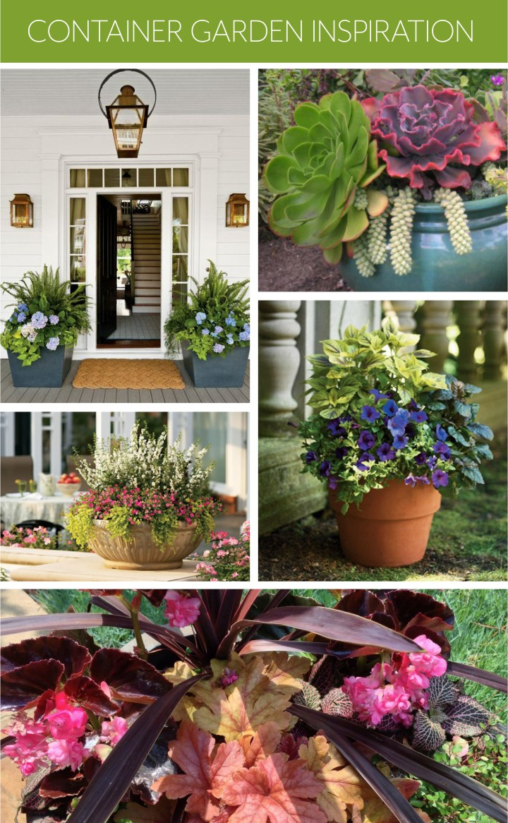 Container-Garden-Inspiration-POLYWOOD