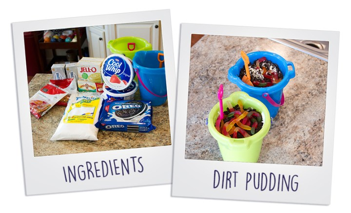 Dirt-Pudding-Polaroids