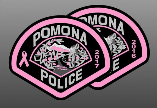 Support The Pink Patch Project