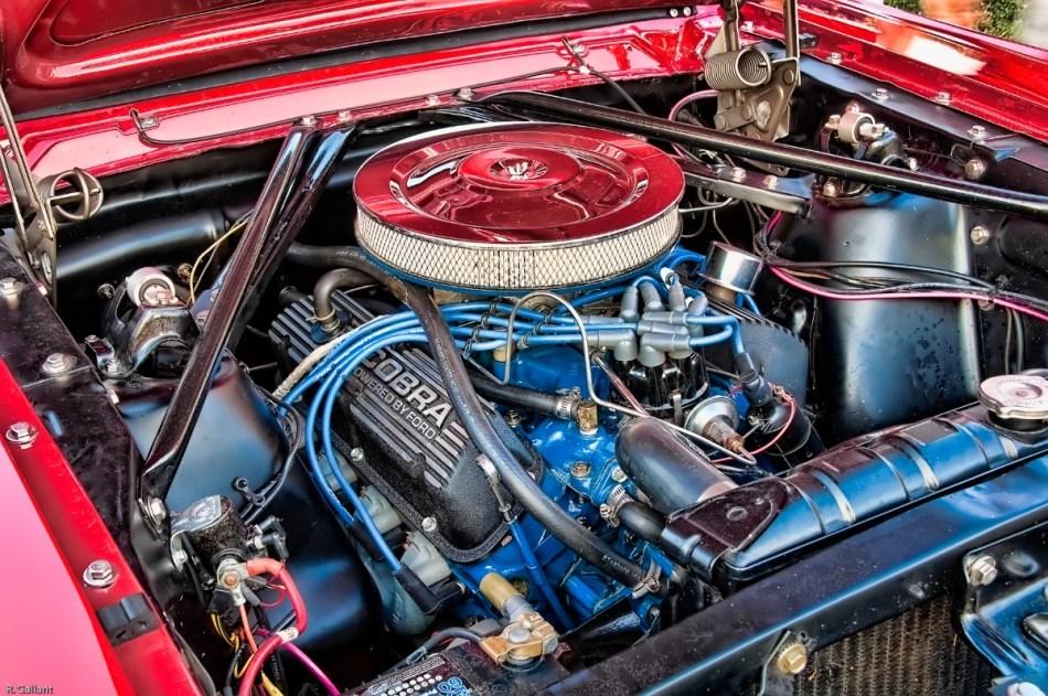 Vintage Mustang Engine