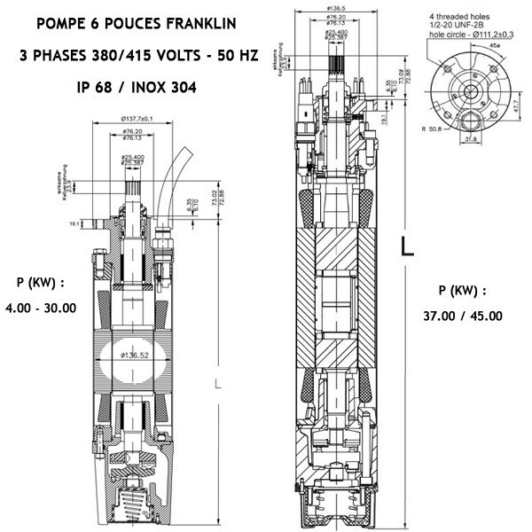 FRANKLIN submersible motor 6